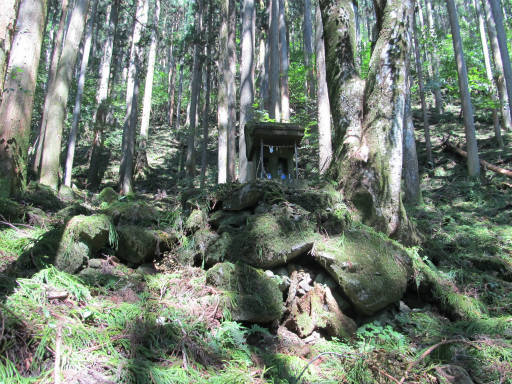 20110910・武甲山3-26