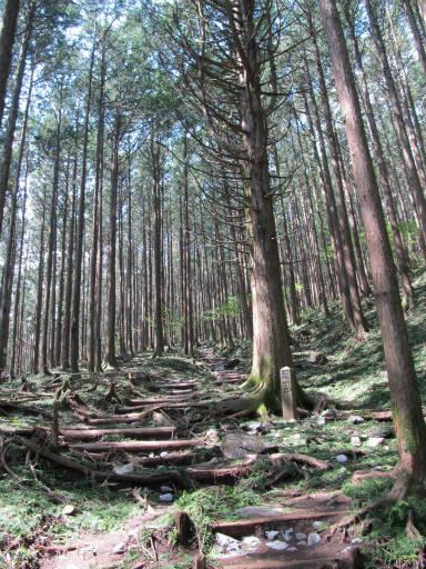 20110910・武甲山4-06