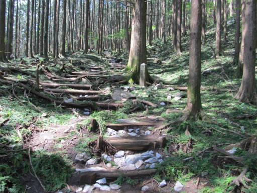 20110910・武甲山4-05