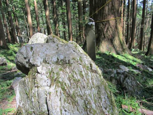20110910・武甲山4-16