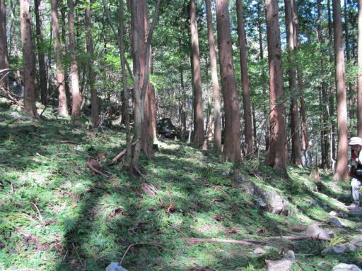 20110910・武甲山4-17