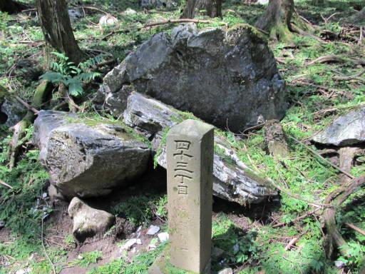 20110910・武甲山4-14