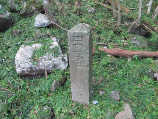 20110910・武甲山4-22・12:05着