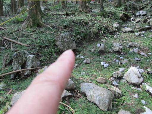 20110910・武甲山4-20