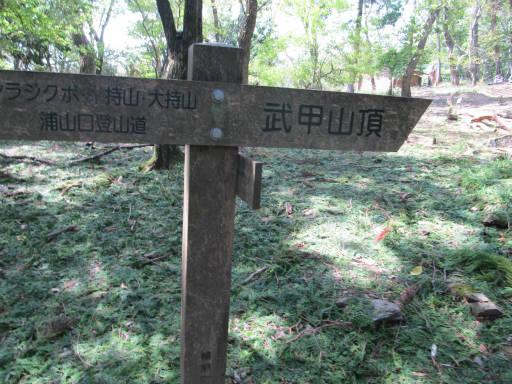 20110910・武甲山4-30・12:30