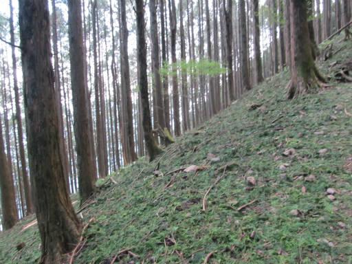 20110910・武甲山4-25