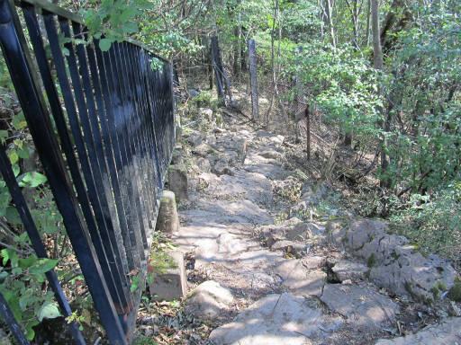 20110910・武甲山5-28