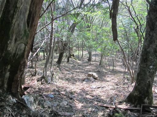 20110910・武甲山5-29