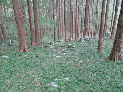 20110910・武甲山6-05