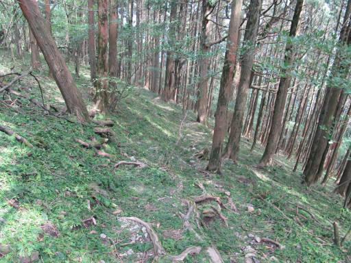 20110910・武甲山6-01