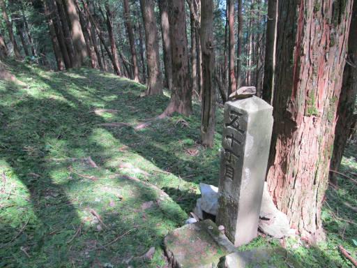 20110910・武甲山6-02