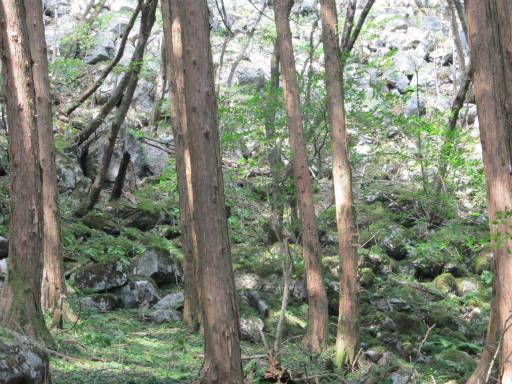 20110910・武甲山6-09