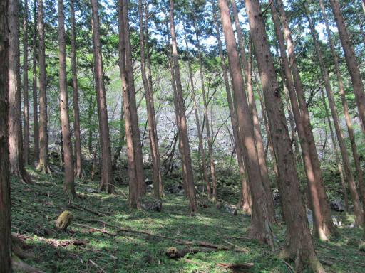 20110910・武甲山6-08