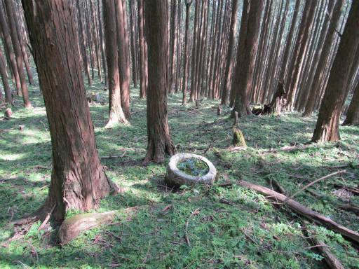 20110910・武甲山6-07