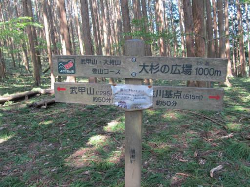 20110910・武甲山6-17