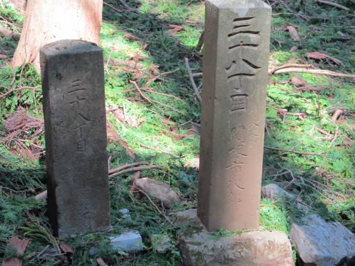 20110910・武甲山6-13