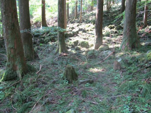 20110910・武甲山6-25