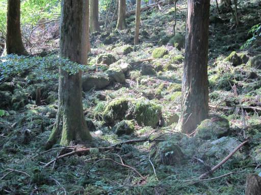 20110910・武甲山6-27