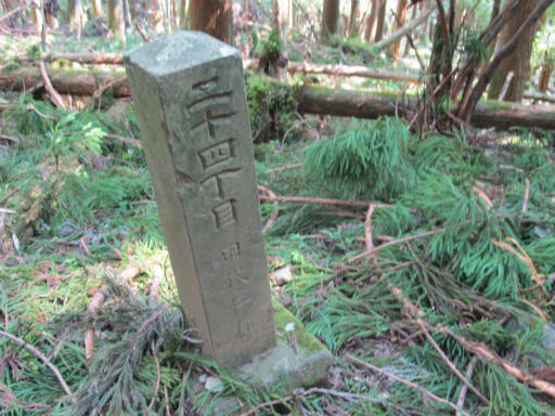 20110910・武甲山7-01