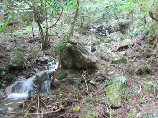 20110910・武甲山7-24