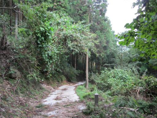 20110910・武甲山7-29