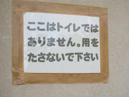 20110923・白根2-24