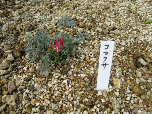 20110923・万座温泉17