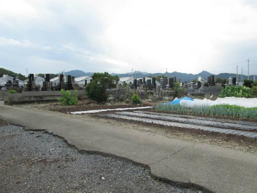 20110922・カメモコ01