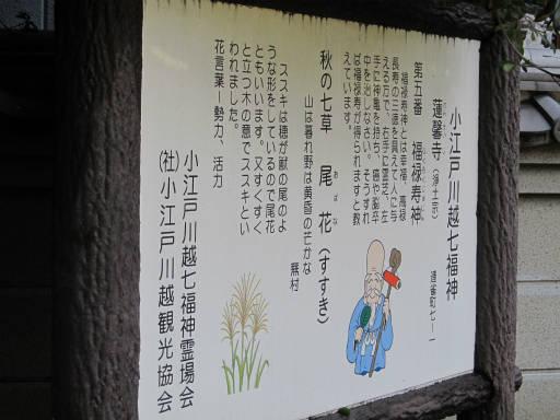 20111015・川越まつり8・連馨寺02