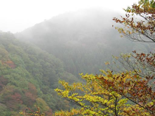 20111023・霧降24