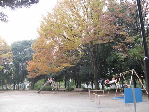 20111105・狭山湖21