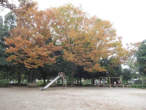 20111105・狭山湖23