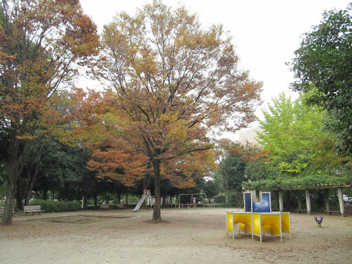 20111105・狭山湖24
