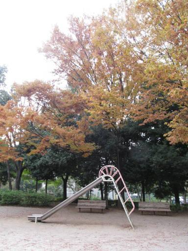 20111105・狭山湖22