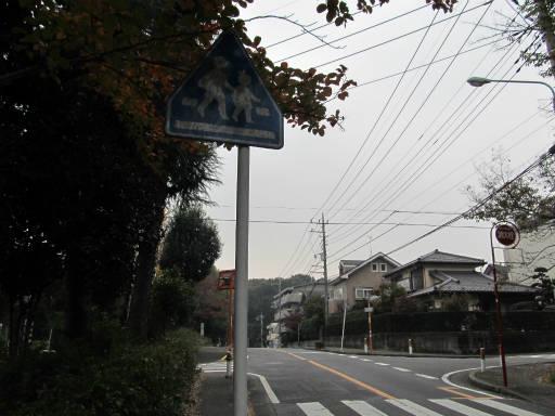 20111105・狭山湖34