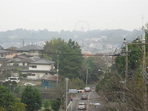 20111105・狭山湖31