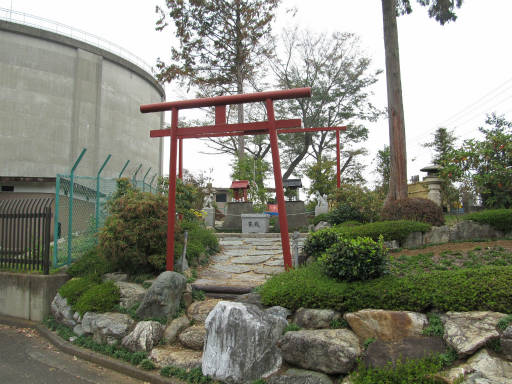 20111105・狭山湖47