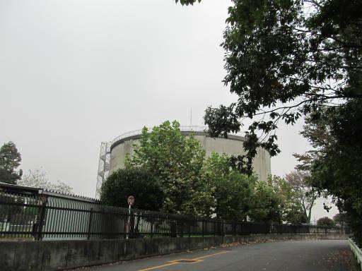 20111105・狭山湖48