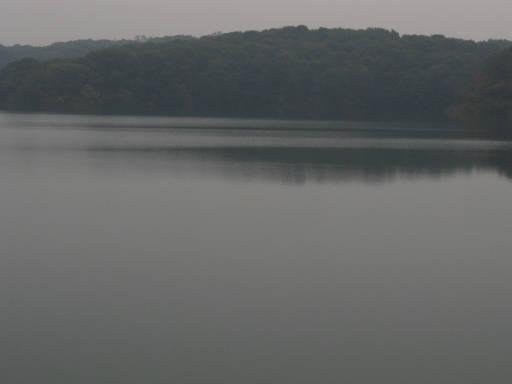 20111105・狭山湖57