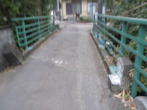 20111105・狭山湖69