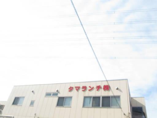 20111114・タマランチ会長・空01