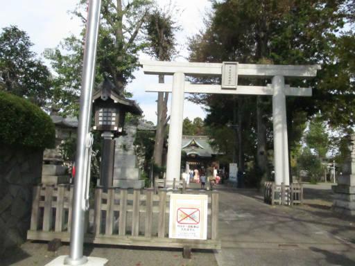 20111114・タマランチ会長2-13