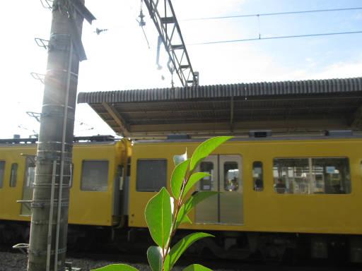 20111114・タマランチ会長5-14