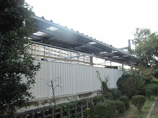 20111114・タマランチ会長6-04