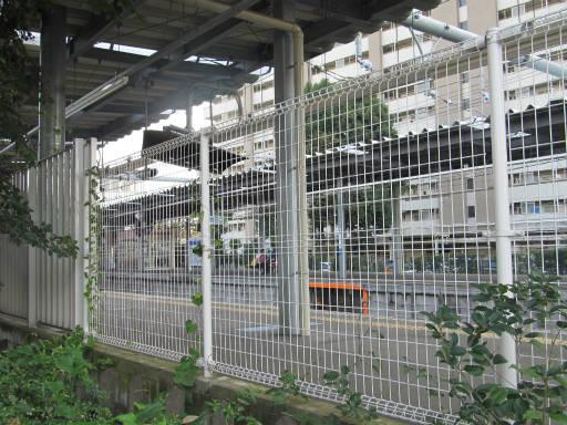 20111114・タマランチ会長6-09