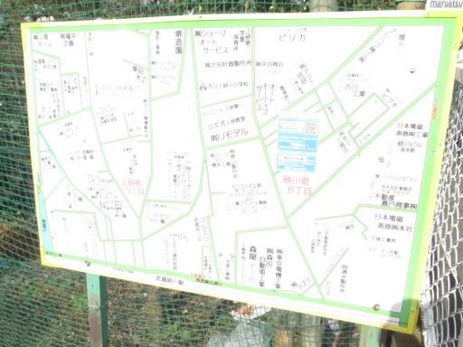 20111114・タマランチ会長ネオン04