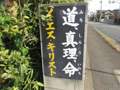 20111114・タマランチ会長ネオン08