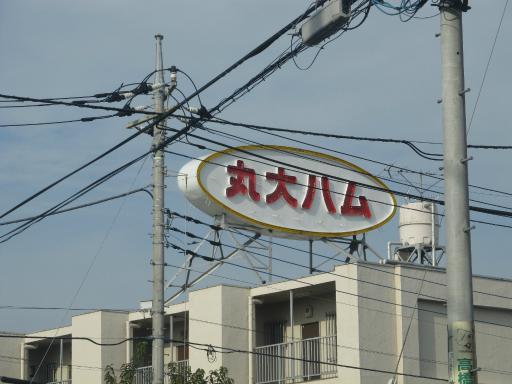 20111114・タマランチ会長ネオン14