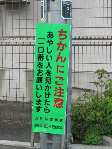20111114・タマランチ会長ネオン13