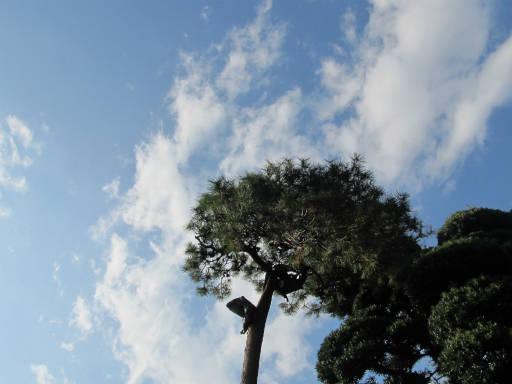 20111120・川越 冬空04